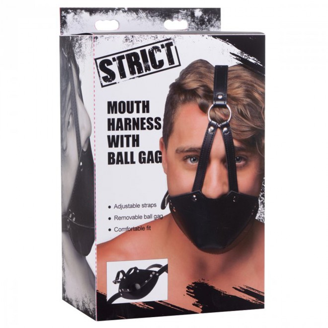Mouth Harness with Ball Gag